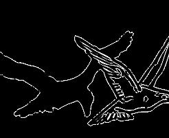 birds-304017_640
